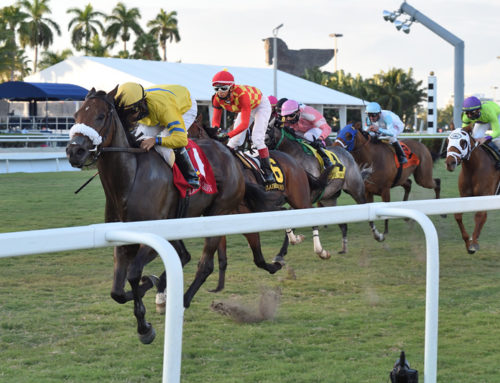 Fiya Blazes to Victory in Claiming Crown Canterbury