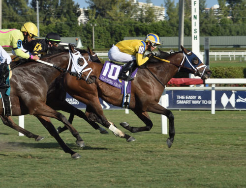 High Noon Rider Shocks Claiming Crown Emerald at 50-1